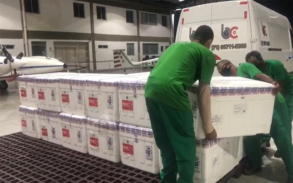 Bahia recebe novo lote com mais de 220 mil doses de vacina contra a Covid-19