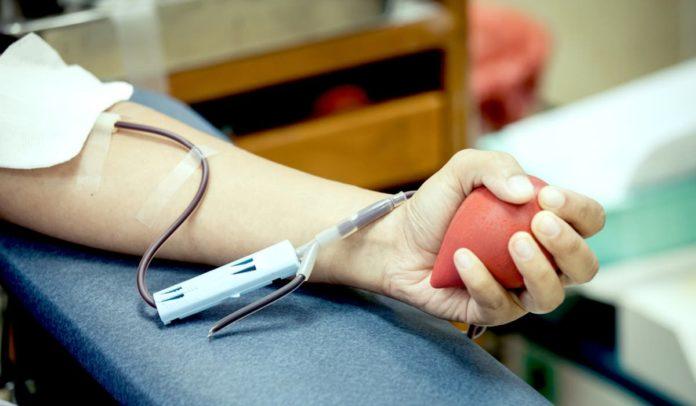 Veja 10 mitos e verdades sobre a doação de sangue